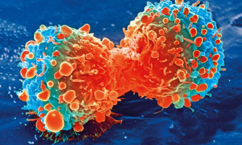 Identifying colorectal cancer subtypes could lead to