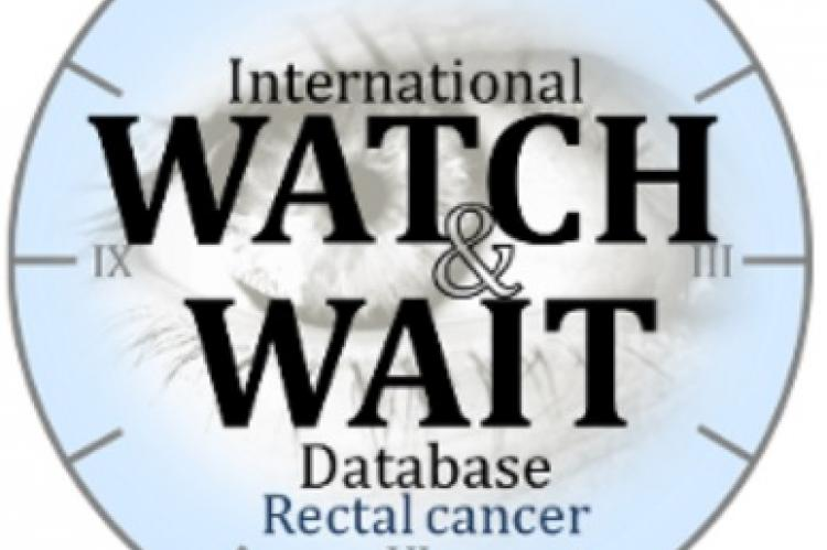 Rectal cancer watch and wait. Can hpv cause colorectal cancer. Vor vindeca viermii